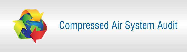 Compressed Air System Audit